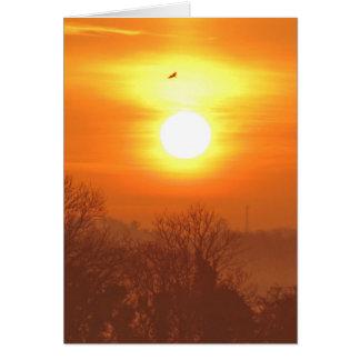 Misty Morning Sunrise and Soaring Bird. Card