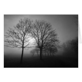Misty Morning Trees Card