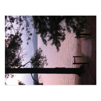 Misty Pink Lake Postcard