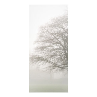 Misty Tree Rack Card