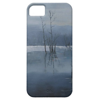 Misty water iPhone 5 covers