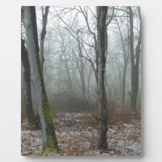 Misty Wood Display Plaques