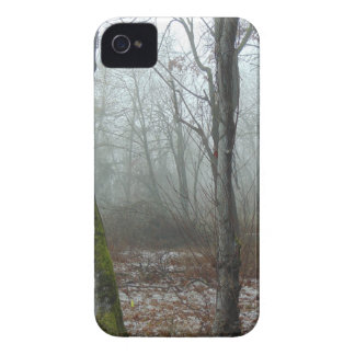 Misty Wood iPhone 4 Case-Mate Case