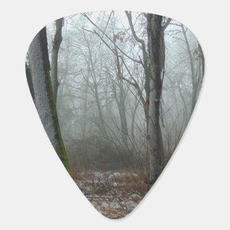 Misty Woods Guitar Pick