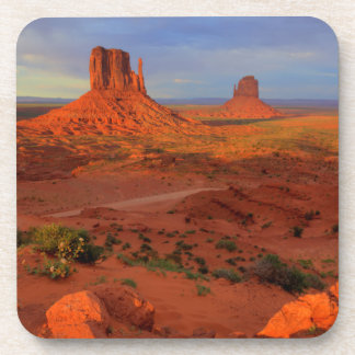 Mittens, Monument valley, AZ Coaster
