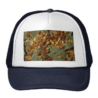 Mix 4 hats