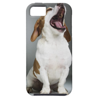 Mixed breed dog yawning, close-up case for the iPhone 5