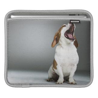Mixed breed dog yawning iPad sleeves