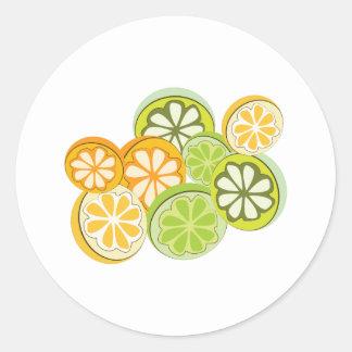 Mixed Citrus Classic Round Sticker