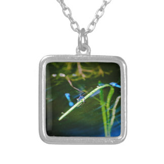 MK2A8136_v01 Silver Plated Necklace