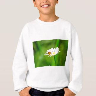 MK2A8183_v01 Sweatshirt