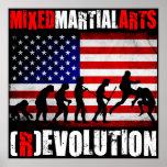 MMA - Evolution (Revolution) Chart Flag Poster