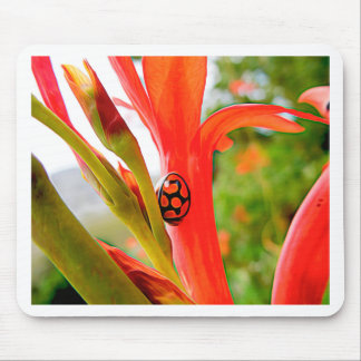 mobile devise red ladybug flower mouse pad