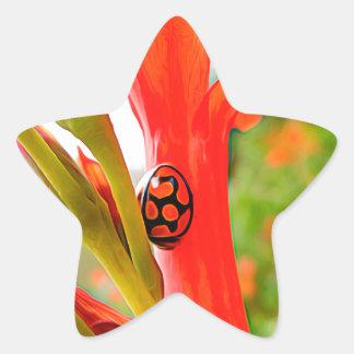 mobile devise red ladybug flower star sticker