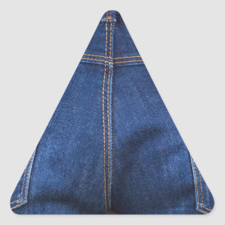 Mobile phone and euro money in blue jeans triangle sticker