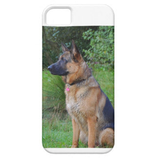 Mobile phone covering German shepherd dog iPhone 5 Covers