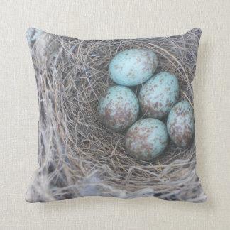 Mocking Bird Nest with Eggs Cushion