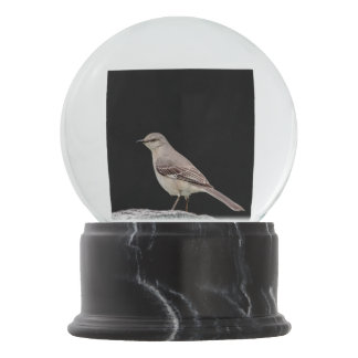 Mockingbird on a tombstone snow globe