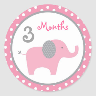 Mod Pink Elephant Monthly Milestone Stickers