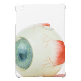 Model human eye isolated on white background.jpg iPad mini case
