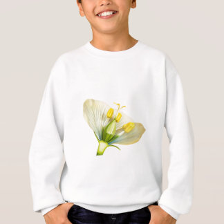 Model of flower with stamens and pistils on white sweatshirt