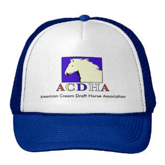 Modern ACDHA logo Blue & White Cap Mesh Hat