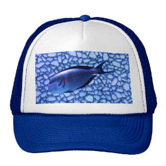 Modern Aquarium Hat