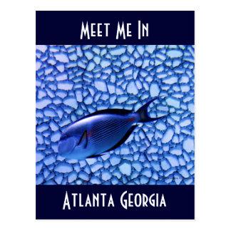 Modern Aquarium Postcard