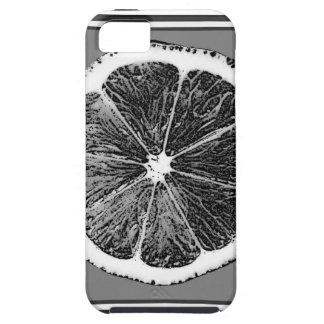 Modern  B&W Grey cut Grape Fruit Design Case For The iPhone 5