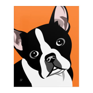 Modern Boston Terrier Dog Art