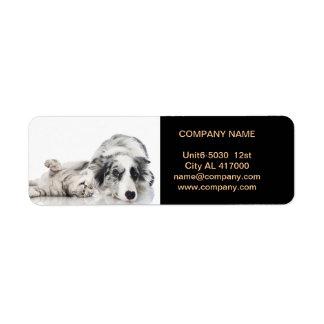 Modern cute animals pet service beauty salon return address label