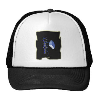 Modern Electronic Design Vintage 2013 Mesh Hat