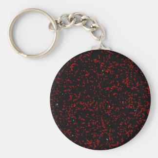 Modern Fractal Art Black Red Patterns Stylish Cool Key Ring