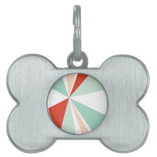 Modern Geometric Art Retro Color Burst Pet ID Tag