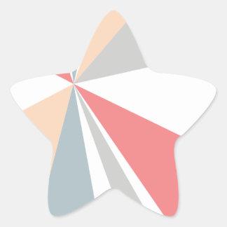 Modern Geometric Art Retro Color Burst Star Sticker