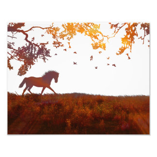 Modern Minimalist Horse Artwork Photography Poster