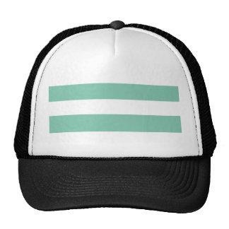 Modern Mint Green White Stripes Pattern Hat