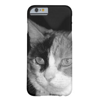 Modern & monochrome cat barely there iPhone 6 case