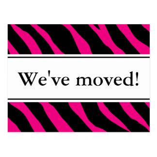 Modern moving postcards   hot pink zebra stripes
