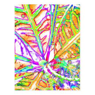 modern plant postcard