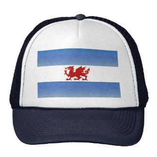 Modern Stripped Patagonian flag Trucker Hat