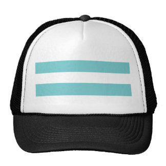Modern Teal White Stripes Pattern Mesh Hat