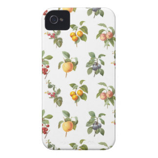 modern vintage botanical fruits iPhone 4 covers