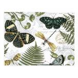 modern vintage butterflies and dragonflies postcard