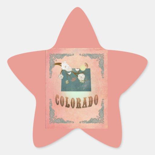 Modern Vintage Colorado State Map- Pastel Peach Stickers