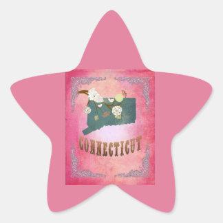 Modern Vintage Connecticut State Map- Candy Pink Star Sticker