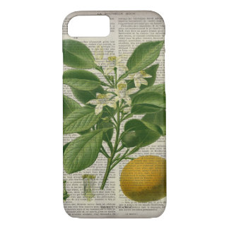 modern vintage french country botanical art orange iPhone 7 case