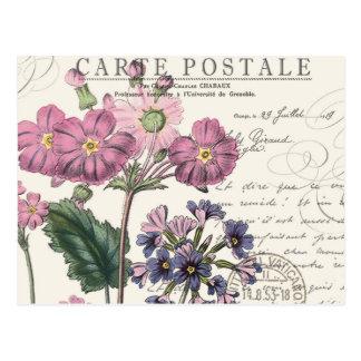 modern vintage french floral postcard