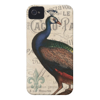 modern vintage french peacock iPhone 4 cover