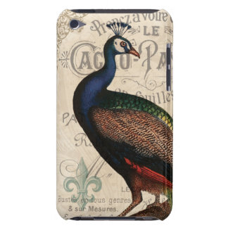 modern vintage french peacock iPod touch cover